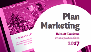 Plan Marketing 2017