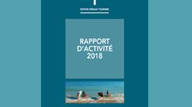 rapport-activite-2018.png