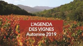 Agenda-des-vignes.png