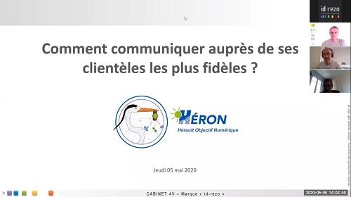 Héron-steno.jpg